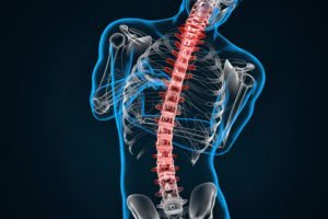 Spondylosis and Scoliosis Treatment   Optimal Wellness Co. - Boulder Massage Therapists
